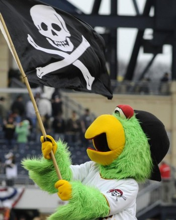 pittsburghpiratesparrotmascot
